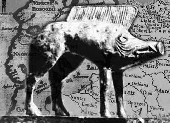 ParisUpdate-Cinemorphe-192016 pig web