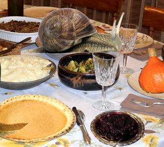 Thanksgiving in France: A Crosscultural History, Unsullied by Facts