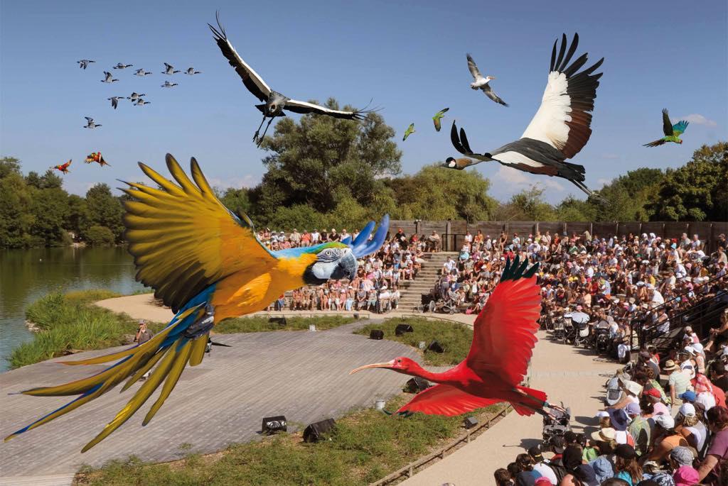 Parc Des Oiseaux Villars Les Dombes Restaurant