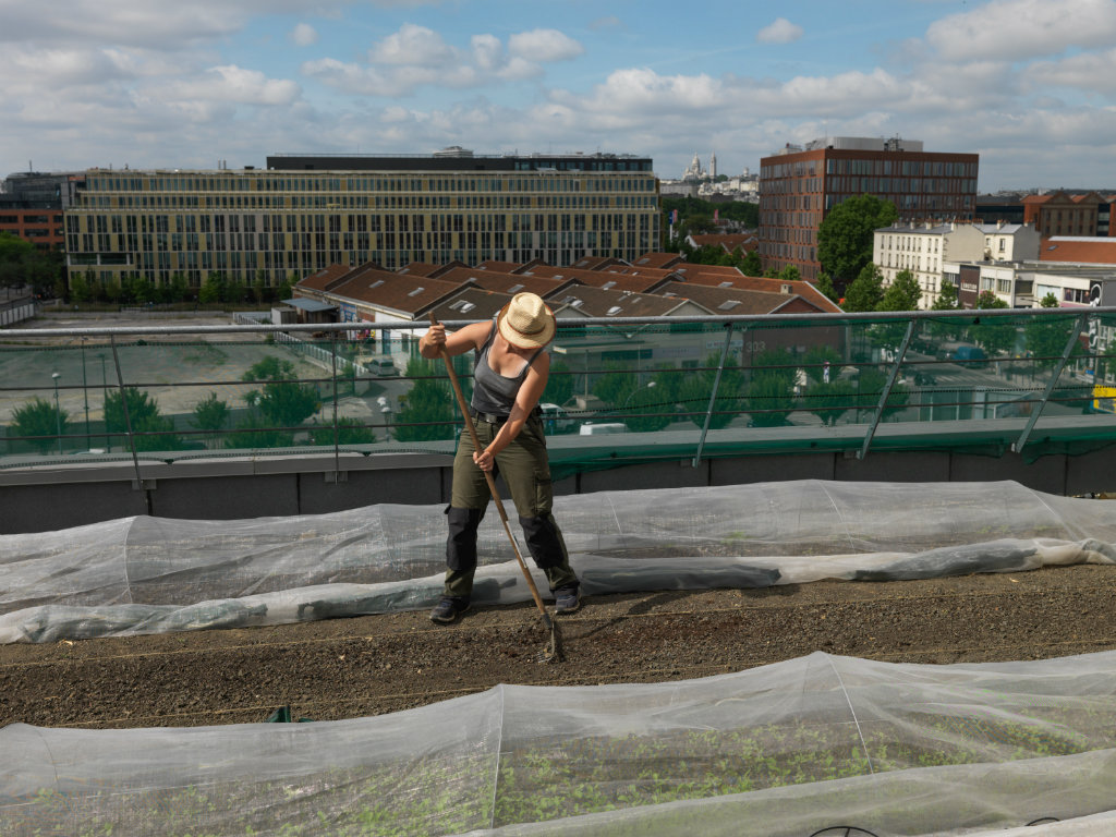 Geoffroy Mathieu's shot of a woman working on a Mizuna plantation on the roof of the Aubervilliers Fashion Centre.