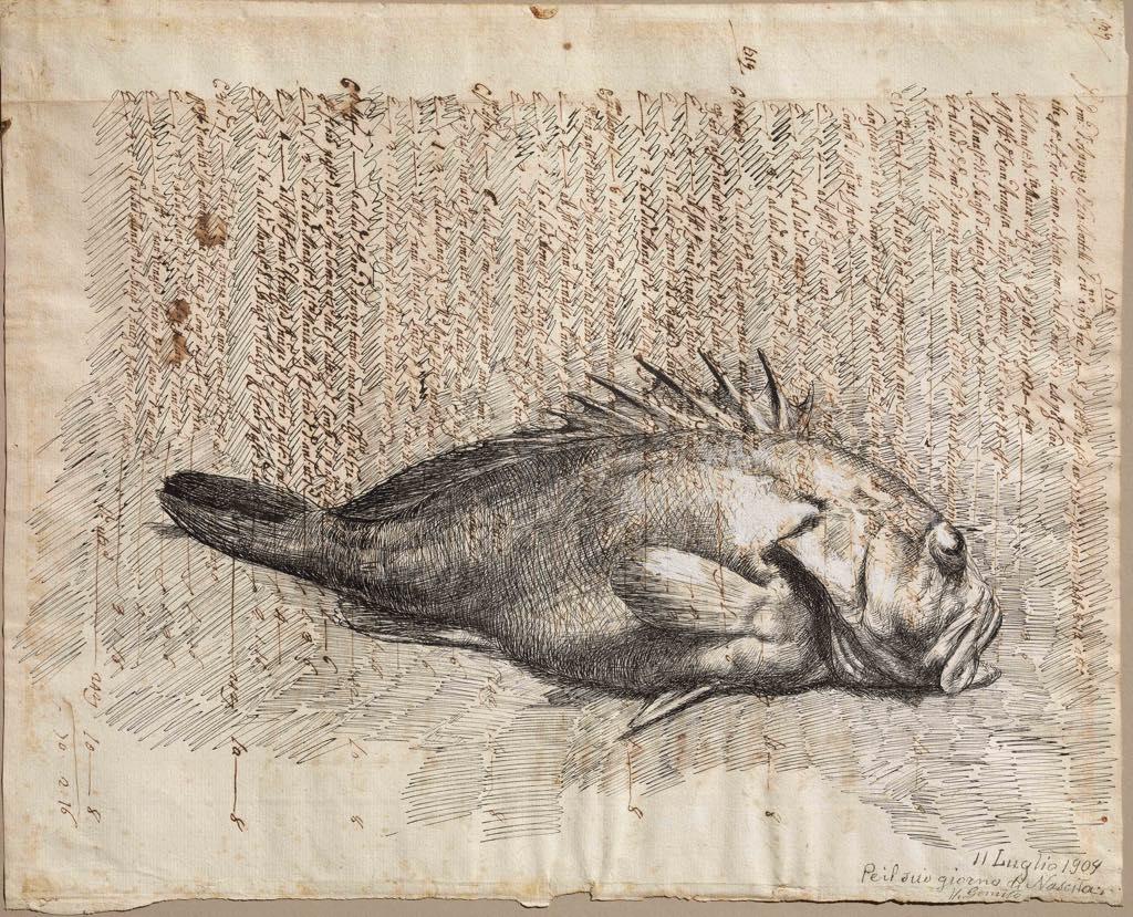 """""""Scorfano"""" 1909. Naples, Collection Intesa Sanpaolo Photo Archivio dell'Arte, Pedicini Fotografi"""
