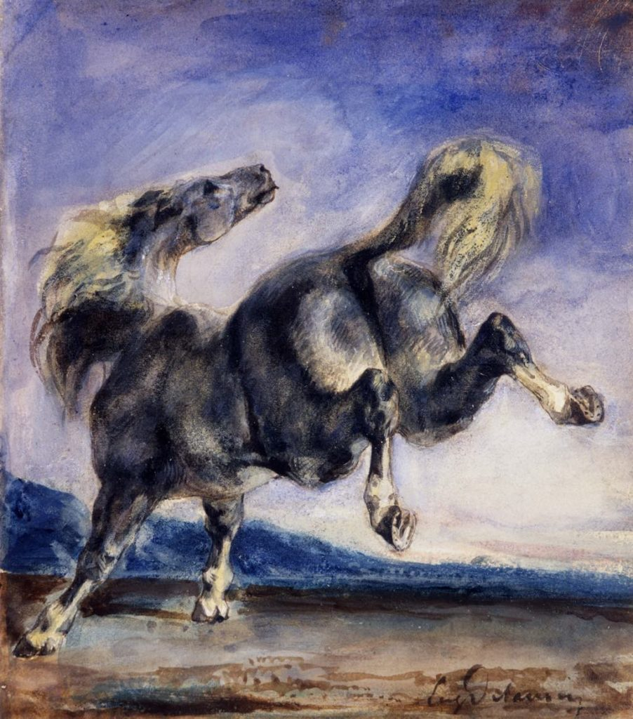 """Wild Horse"" (undated) by Eugène Delacroix. Prat Collection"