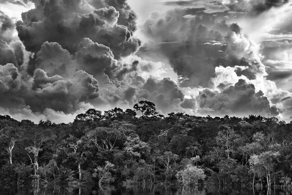Mariuá Archipelageo, Rio Negro, State of Amazonas, Brazil, 2019 © Sebastião Salgado